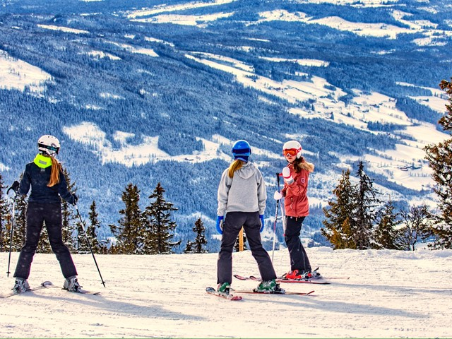 Valdres Alpinsenter stenger fra og med i morgen, lørdag 14. mars